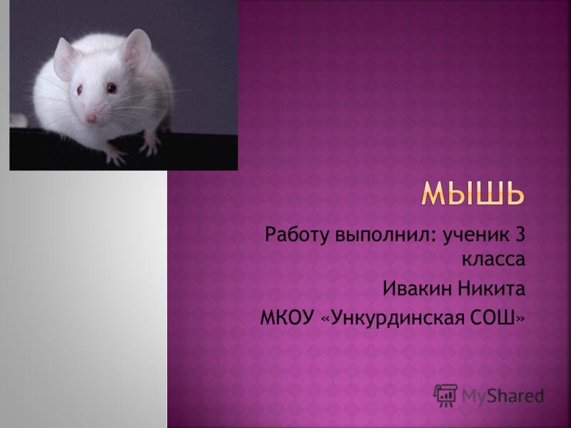 Работу выполнил: ученик 3 класса Ивакин Никита МКОУ «Ункурдинская СОШ»