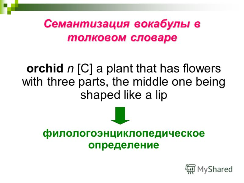 Семантизация вокабулы в толковом словаре orchid n [С] a plant that has flowers with three parts, the middle one being shaped like a lip филологоэнциклопедическое определение