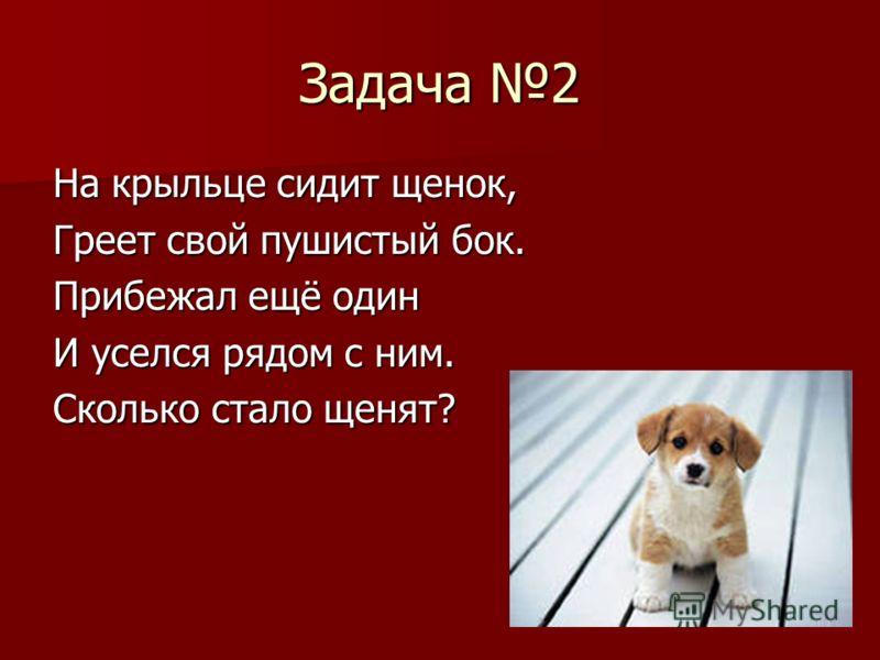 Задача 2 На крыльце сидит щенок, Греет свой пушистый бок. Прибежал ещё один И уселся рядом с ним. Сколько стало щенят?