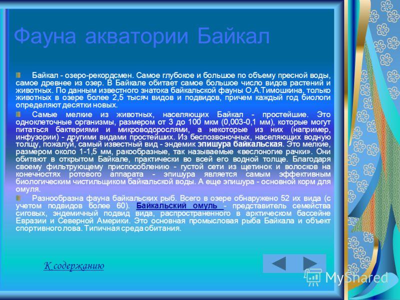 Фауна акватории Байкал Байкал - озеро-рекордсмен. Самое глубокое и большое по объему пресной воды, самое древнее из озер. В Байкале обитает самое большое число видов растений и животных. По данным известного знатока байкальской фауны О.А.Тимошкина, т