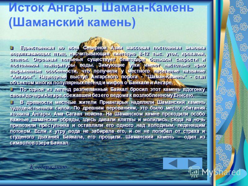Исток Ангары. Шаман-Камень (Шаманский камень) Единственная во всей Северной Азии массовая постоянная зимовка водоплавающих птиц, насчитывающая ежегодно 8-12 тыс. уток, крохалей, оляпок. Огромная полынья существует благодаря большой скорости и постоян