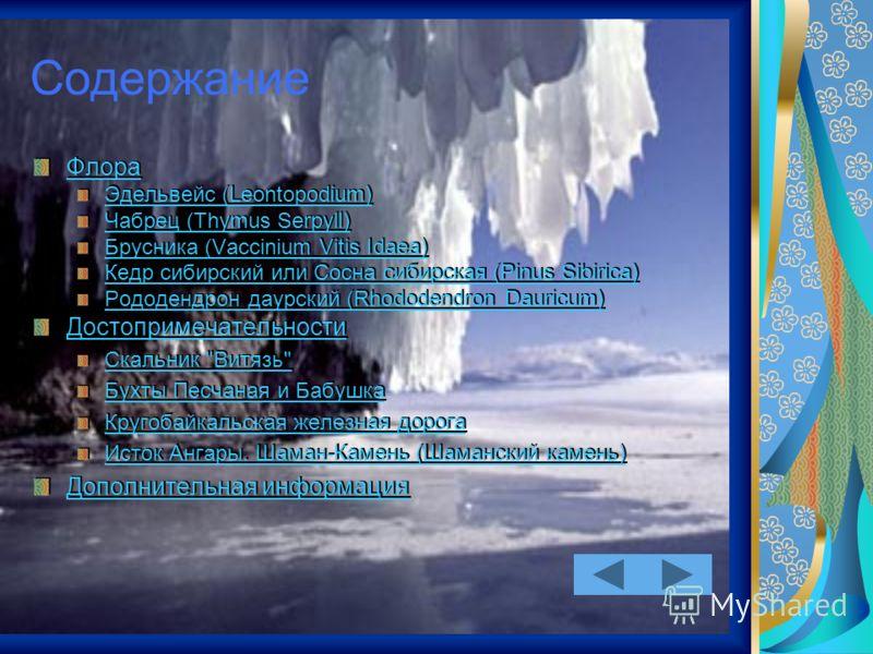 Содержание Флора Эдельвейс (Leontopodium) Чабрец (Thymus Serpyll) Брусника (Vaccinium Vitis Idaea) Кедр сибирский или Сосна сибирская (Pinus Sibirica) Рододендрон даурский (Rhododendron Dauricum) Достопримечательности Скальник