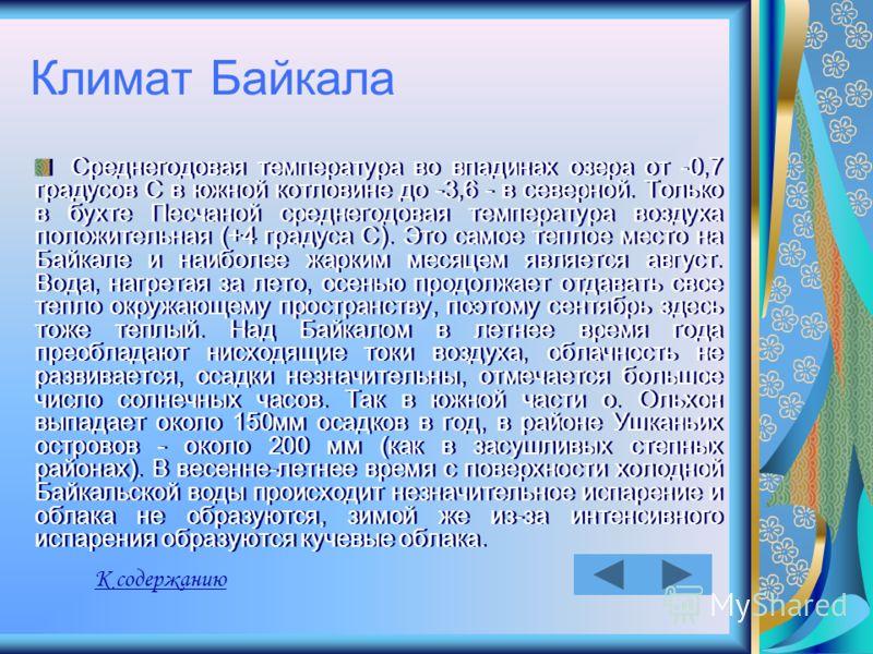 Климат Байкала Среднегодовая температура во впадинах озера от -0,7 градусов С в южной котловине до -3,6 - в северной. Только в бухте Песчаной среднегодовая температура воздуха положительная (+4 градуса С). Это самое теплое место на Байкале и наиболее