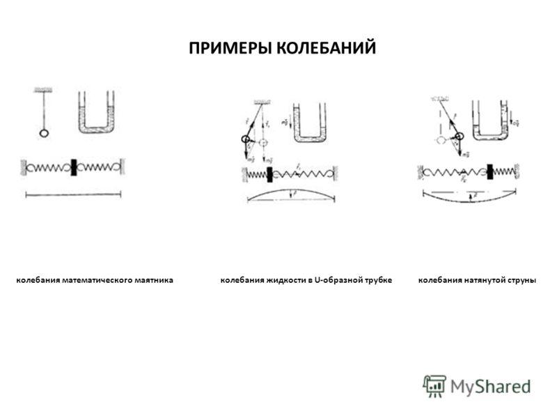 ПРИМЕРЫ КОЛЕБАНИЙ колебания математического маятника колебания жидкости в U-образной трубке колебания натянутой струны