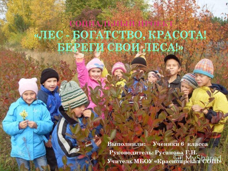 Выполнили: Ученики 6 класса Руководитель: Русанова Г.Н. Учитель МБОУ «Красноярская СОШ»