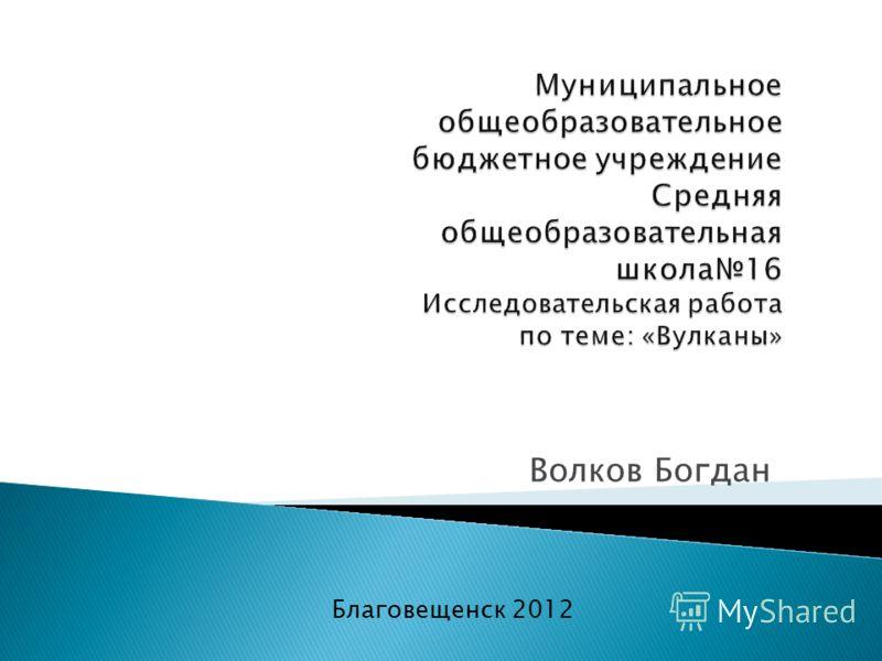Волков Богдан Благовещенск 2012