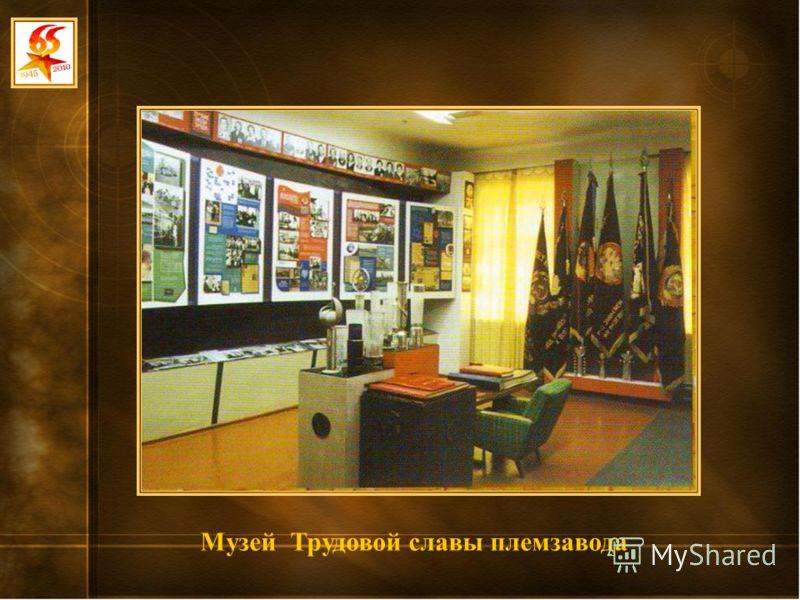 Музей Трудовой славы племзавода