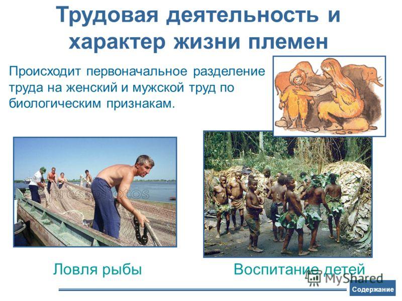 Ловля рыбы Воспитание детей Трудовая деятельность и характер жизни племен Происходит первоначальное разделение труда на женский и мужской труд по биологическим признакам. Содержание