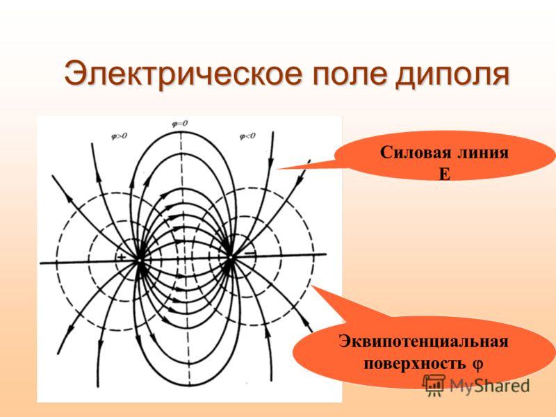 Электрическое поле диполя Эквипотенциальная поверхность Силовая линия E