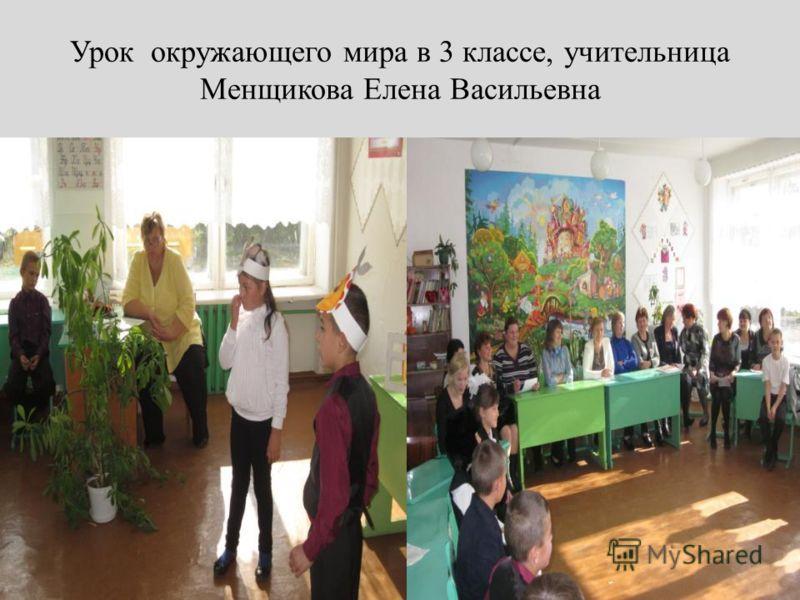 Урок окружающего мира в 3 классе, учительница Менщикова Елена Васильевна