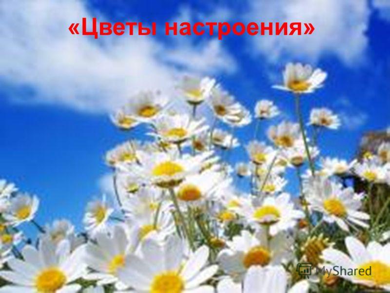 «Цветы настроения»