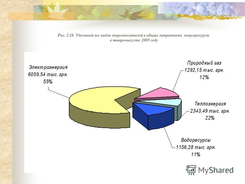 Рис. 2.10. Удельный вес видов энергоносителей в общих затратахна энергоресурсы в январе-августе 2005 году