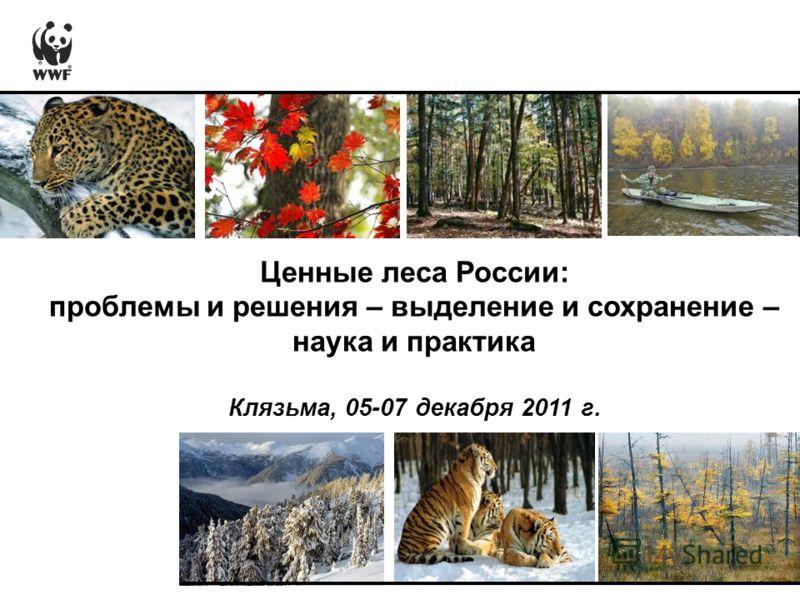 Ценные леса России: проблемы и решения – выделение и сохранение – наука и практика Клязьма, 05-07 декабря 2011 г.