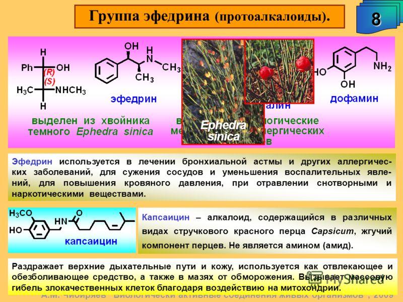 Группа эфедрина (протоалкалоиды). 8 А.М. Чибиряев