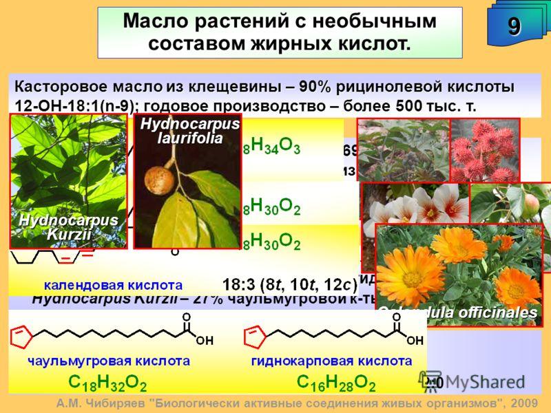 Масло растений с необычным составом жирных кислот. А.М. Чибиряев
