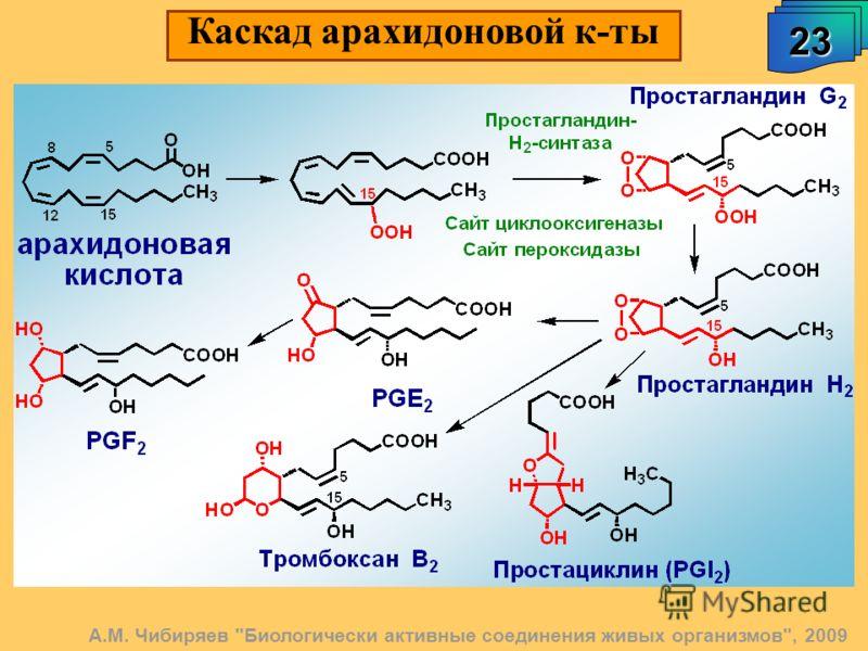 23 А.М. Чибиряев Биологически активные соединения живых организмов, 2009