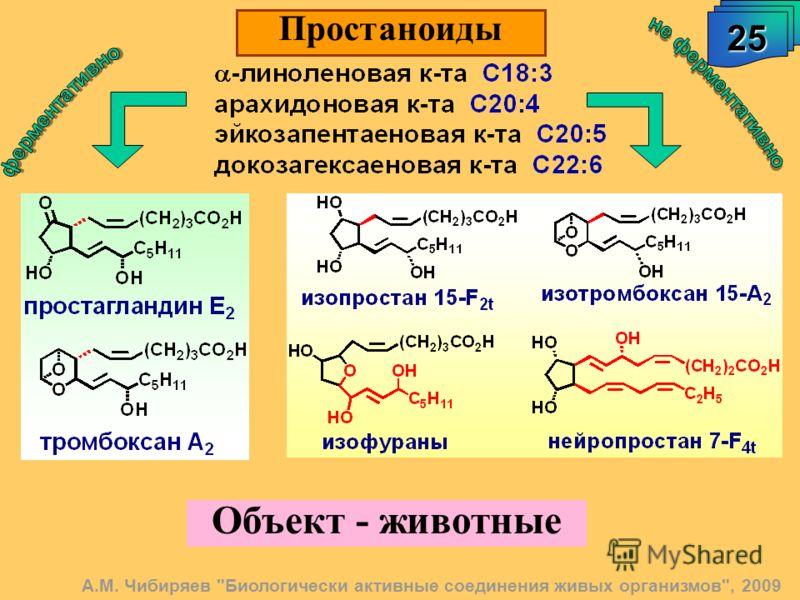 Объект - животные 25 Простаноиды А.М. Чибиряев Биологически активные соединения живых организмов, 2009