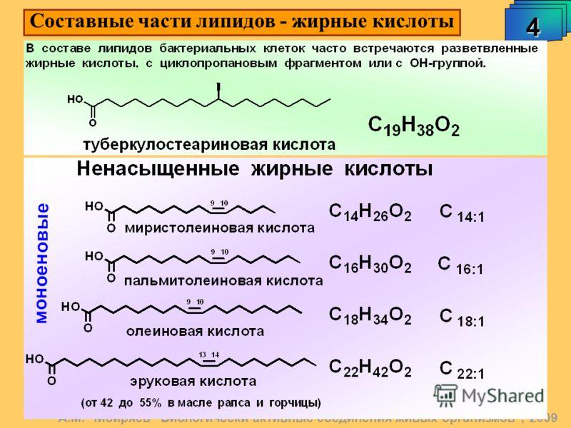 Составные части липидов - жирные кислоты А.М. Чибиряев Биологически активные соединения живых организмов, 2009 4