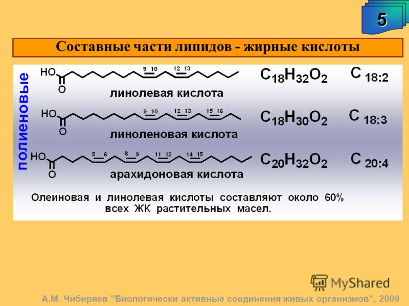 Составные части липидов - жирные кислоты 5 А.М. Чибиряев Биологически активные соединения живых организмов, 2009