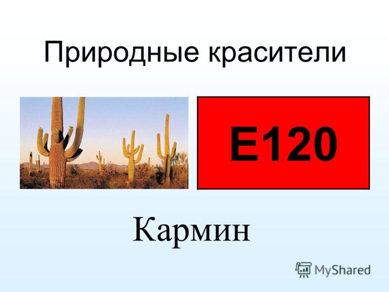 Природные красители Е120 Кармин