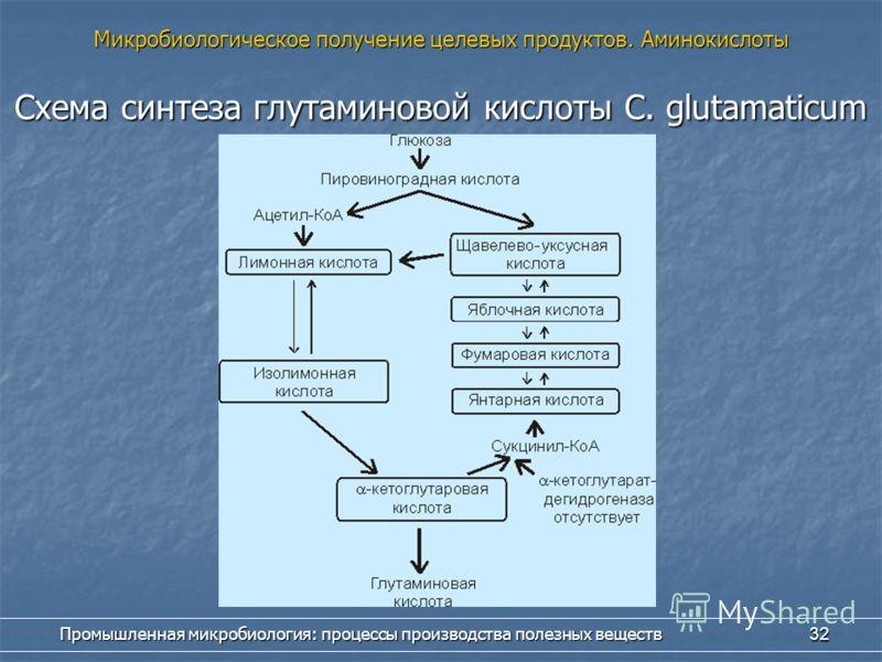 Промышленная микробиология: процессы производства полезных веществ 32 Схема синтеза глутаминовой кислоты С. glutamaticum Микробиологическое получение целевых продуктов. Аминокислоты