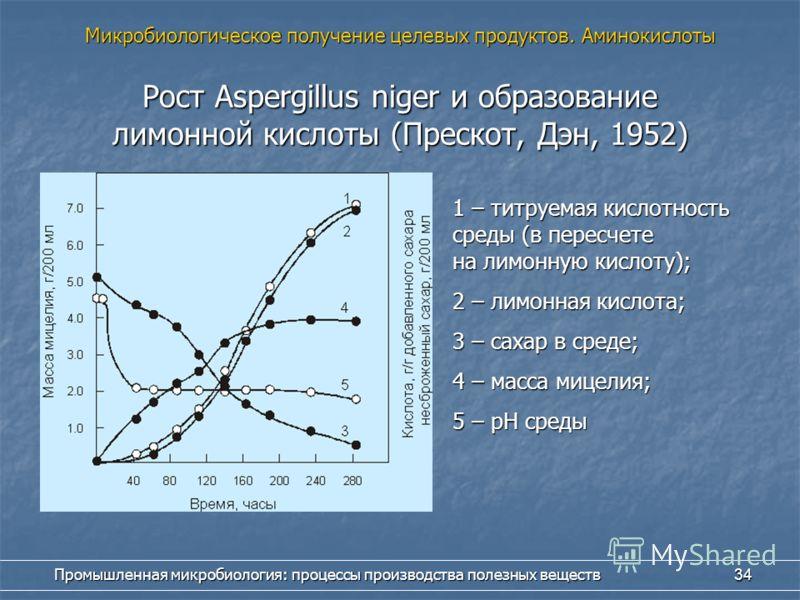 Промышленная микробиология: процессы производства полезных веществ 34 Рост Aspergillus niger и образование лимонной кислоты (Прескот, Дэн, 1952) 1 – титруемая кислотность среды (в пересчете на лимонную кислоту); 2 – лимонная кислота; 3 – сахар в сред