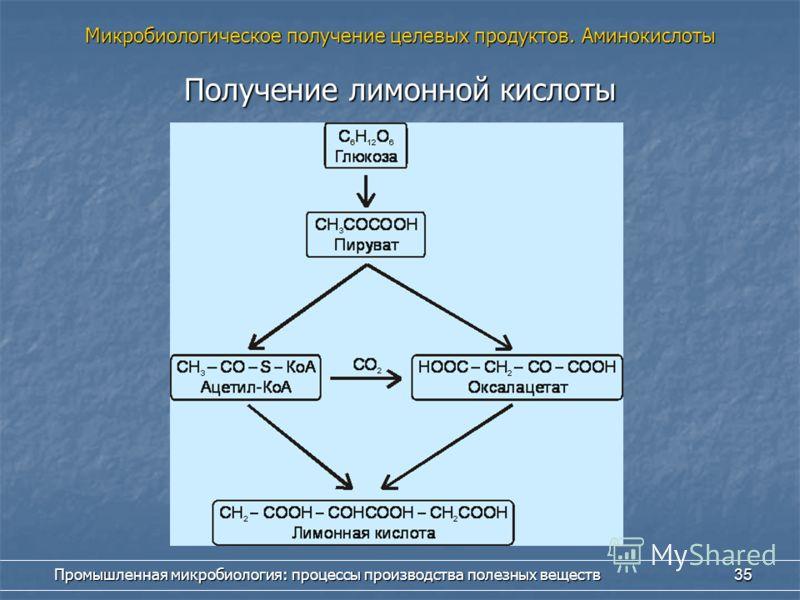 Промышленная микробиология: процессы производства полезных веществ 35 Получение лимонной кислоты Микробиологическое получение целевых продуктов. Аминокислоты
