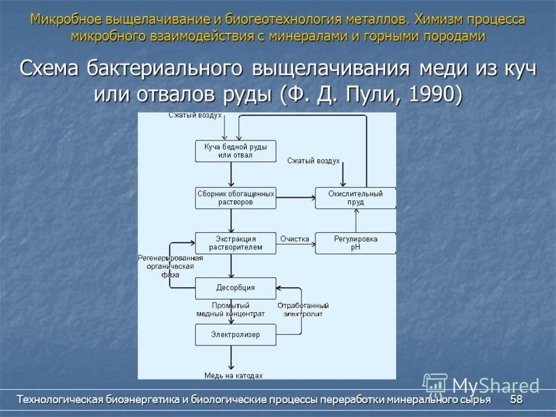 Технологическая биоэнергетика и биологические процессы переработки минерального сырья 58 Схема бактериального выщелачивания меди из куч или отвалов руды (Ф. Д. Пули, 1990) Микробное выщелачивание и биогеотехнология металлов. Химизм процесса микробног