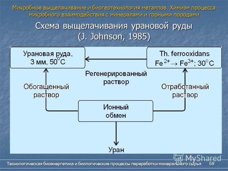 Технологическая биоэнергетика и биологические процессы переработки минерального сырья 59 Схема выщелачивания урановой руды (J. Johnson, 1985) Микробное выщелачивание и биогеотехнология металлов. Химизм процесса микробного взаимодействия с минералами