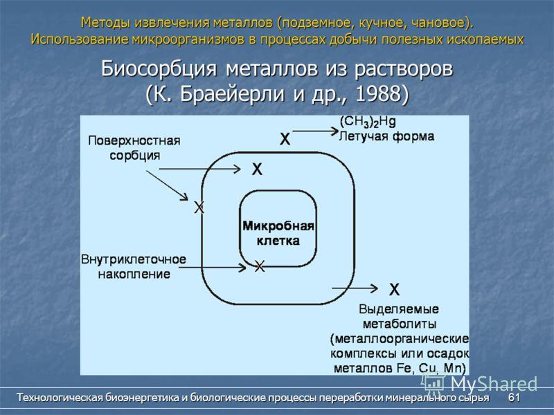 Технологическая биоэнергетика и биологические процессы переработки минерального сырья 61 Биосорбция металлов из растворов (К. Браейерли и др., 1988) Методы извлечения металлов (подземное, кучное, чановое). Использование микроорганизмов в процессах до