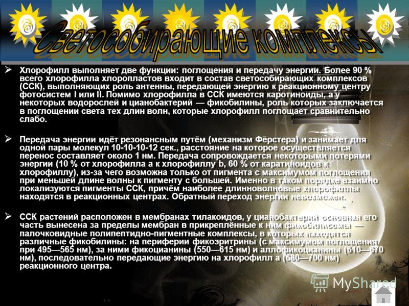 Хлорофилл имеет два уровня возбуждения (с этим связано наличие двух максимумов на спектре его поглощения): первый связан с переходом на более высокий энергетический уровень электрона системы сопряжённых двойных связей, второй с возбуждением неспаренн