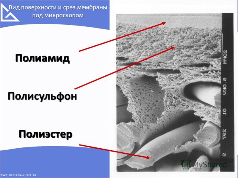 8 Вид поверхности и срез мембраны под микроскопом Полиамид Полисульфон Полиэстер