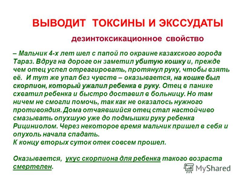 ВЫВОДИТ ТОКСИНЫ И ЭКССУДАТЫ дезинтоксикационное свойство убитую кошку на кошке был скорпион, который ужалил ребенка в руку – Мальчик 4-х лет шел с папой по окраине казахского города Тараз. Вдруг на дороге он заметил убитую кошку и, прежде чем отец ус