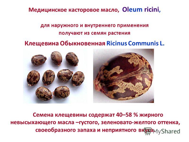 Семена клещевины содержат 40–58 % жирного невысыхающего масла –густого, зеленовато-желтого оттенка, своеобразного запаха и неприятного вкуса. Медицинское касторовое масло, Oleum ricini, для наружного и внутреннего применения получают из семян растени