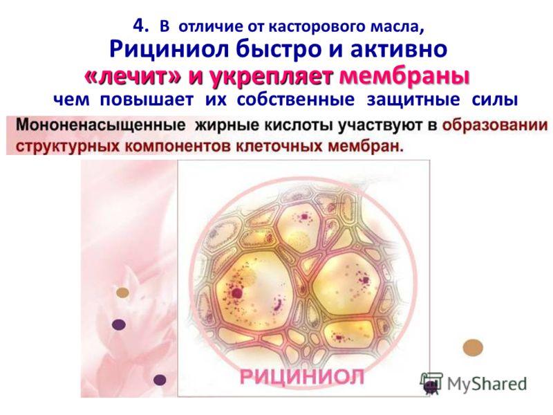 «лечит» и укрепляетмембраны 4. В отличие от касторового масла, Рициниол быстро и активно «лечит» и укрепляет мембраны чем повышает их собственные защитные силы
