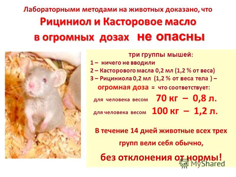 Рициниол и Касторовое масло в огромных дозах не опасны Лабораторными методами на животных доказано, что Рициниол и Касторовое масло в огромных дозах не опасны три группы мышей : 1 – ничего не вводили 2 – Касторового масла 0,2 мл (1,2 % от веса) 3 – Р