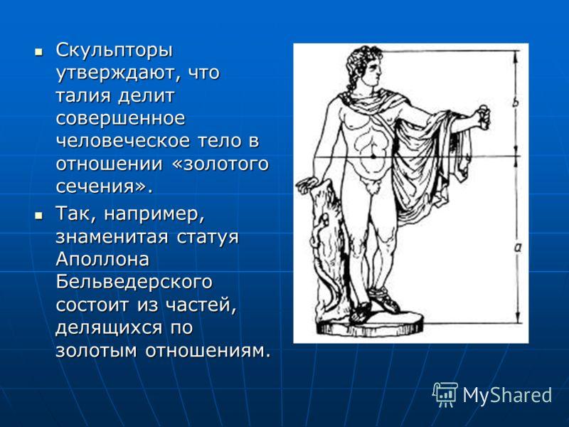 Скульпторы утверждают, что талия делит совершенное человеческое тело в отношении «золотого сечения». Скульпторы утверждают, что талия делит совершенное человеческое тело в отношении «золотого сечения». Так, например, знаменитая статуя Аполлона Бельве
