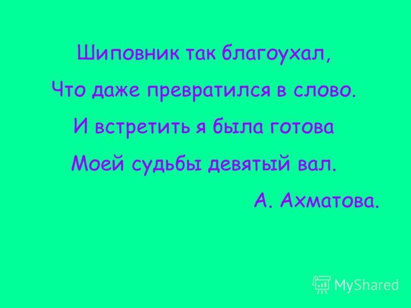 Шиповник так благоухал, Что даже превратился в слово. И встретить я была готова Моей судьбы девятый вал. А. Ахматова.