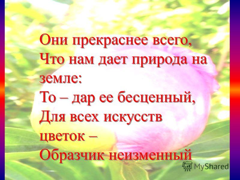 Они прекраснее всего, Что нам дает природа на земле: То – дар ее бесценный, Для всех искусств цветок – Образчик неизменный Они прекраснее всего, Что нам дает природа на земле: То – дар ее бесценный, Для всех искусств цветок – Образчик неизменный