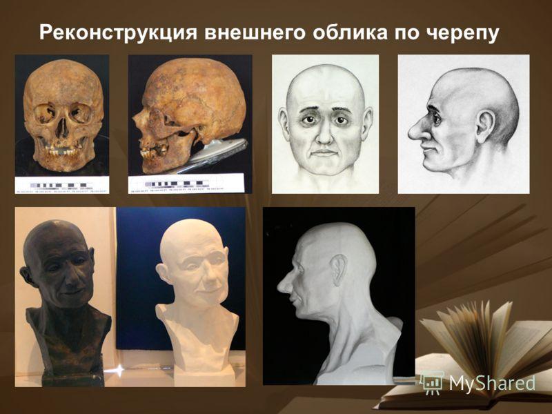 Реконструкция внешнего облика по черепу