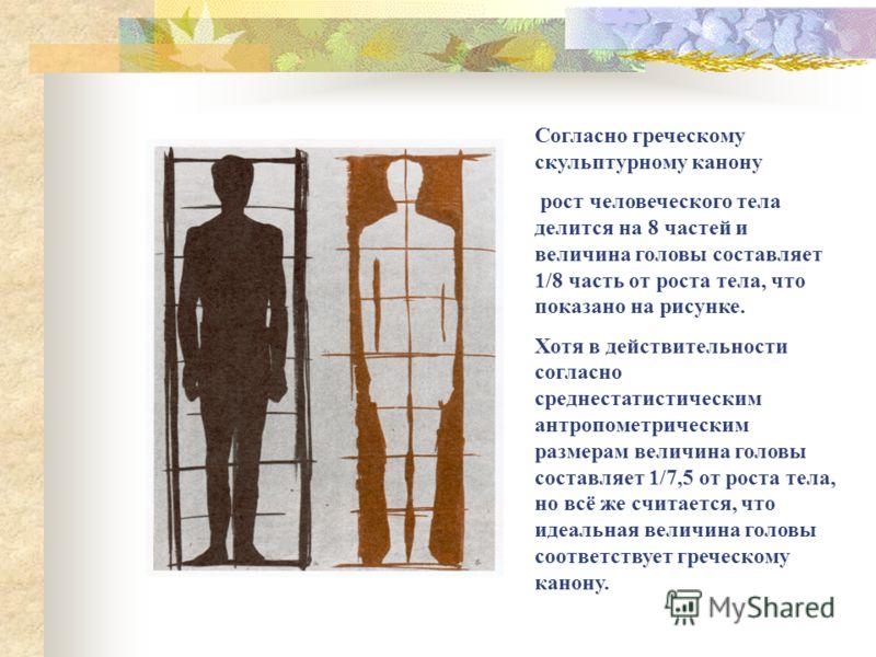 Согласно греческому скульптурному канону рост человеческого тела делится на 8 частей и величина головы составляет 1/8 часть от роста тела, что показано на рисунке. Хотя в действительности согласно среднестатистическим антропометрическим размерам вели