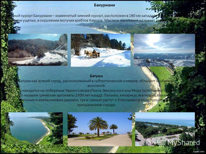 Бакуриани Горнолыжный курорт Бакуриани – знаменитый зимний курорт, расположен в 180 км западнее Тбилиси на высоте 1800 метров в Боржомском ущелье, в окружении могучих хребтов Кавказа. Местное население называет это место - «Солнечная долина». Батуми
