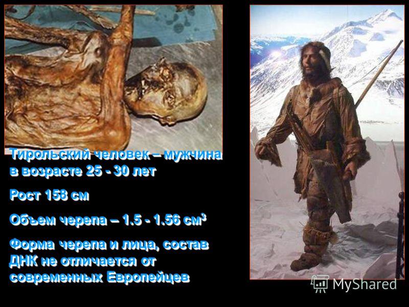 Тирольский человек – мужчина в возрасте 25 - 30 лет Рост 158 см Объем черепа – 1.5 - 1.56 см 3 Форма черепа и лица, состав ДНК не отличается от современных Европейцев Тирольский человек – мужчина в возрасте 25 - 30 лет Рост 158 см Объем черепа – 1.5