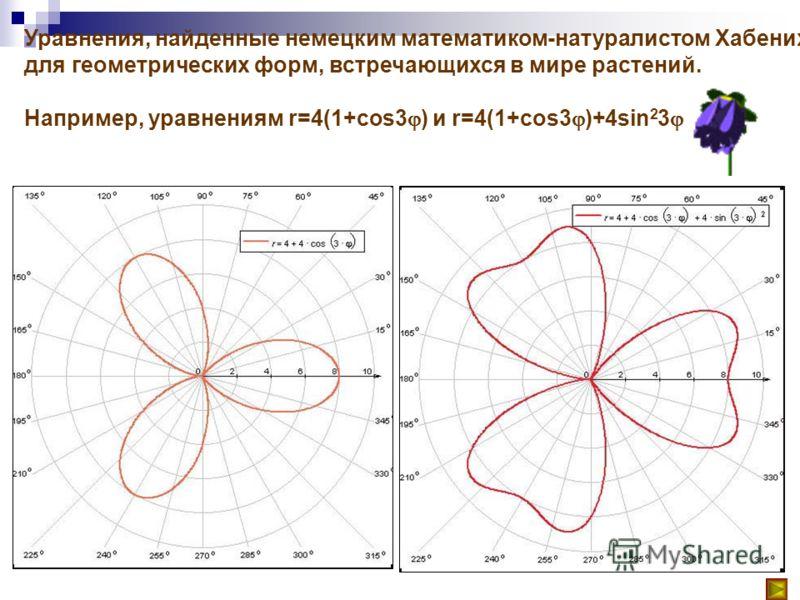 I. r=sin3 ( трилистник ) (рис.1) II.r=1/2+sin3 (рис.2), III. r=1+ sin3 (рис.3), IV. r=3/2+ sin3 (рис.4). У кривой IV наименьшее значение r=0,5 и лепестки имеют незаконченный вид.(рис.IV в приложении). Таким образом при а 1 лепестки трилистника имеют