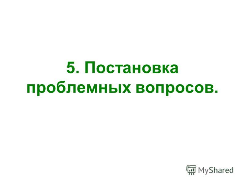 5. Постановка проблемных вопросов.