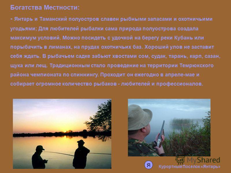 Богатства Местности: - Янтарь и Таманский полуостров славен рыбными запасами и охотничьими угодьями; Для любителей рыбалки сама природа полуострова создала максимум условий. Можно посидеть с удочкой на берегу реки Кубань или порыбачить в лиманах, на