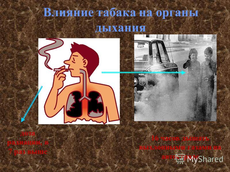Влияние табака на органы дыхания доза радиации, в 7 раз выше 16 часов дышать выхлопными газами на автостраде