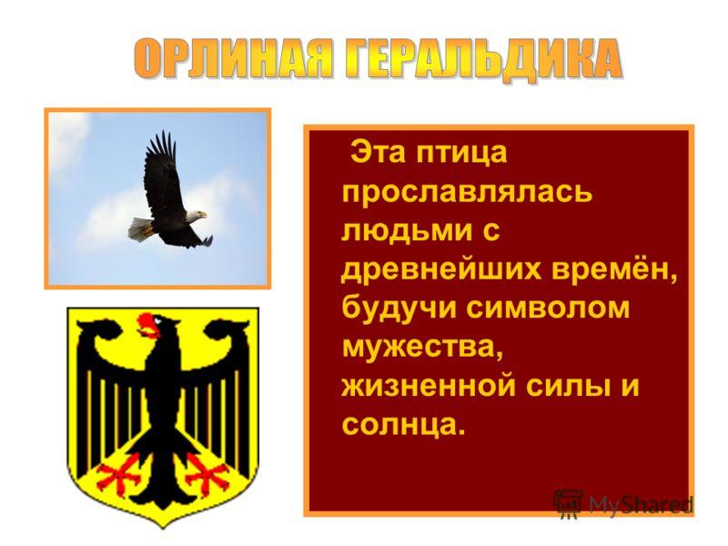 Эта птица прославлялась людьми с древнейших времён, будучи символом мужества, жизненной силы и солнца.