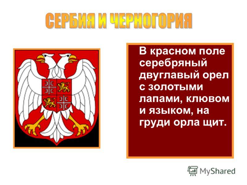 В красном поле серебряный двуглавый орел с золотыми лапами, клювом и языком, на груди орла щит.