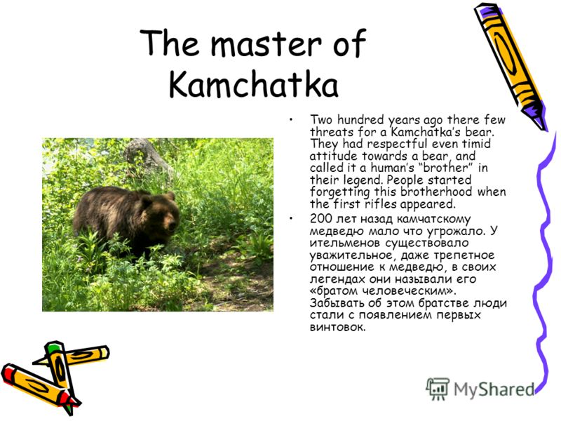 The master of Kamchatka Two hundred years ago there few threats for a Kamchatkas bear. They had respectful even timid attitude towards a bear, and called it a humans brother in their legend. People started forgetting this brotherhood when the first r